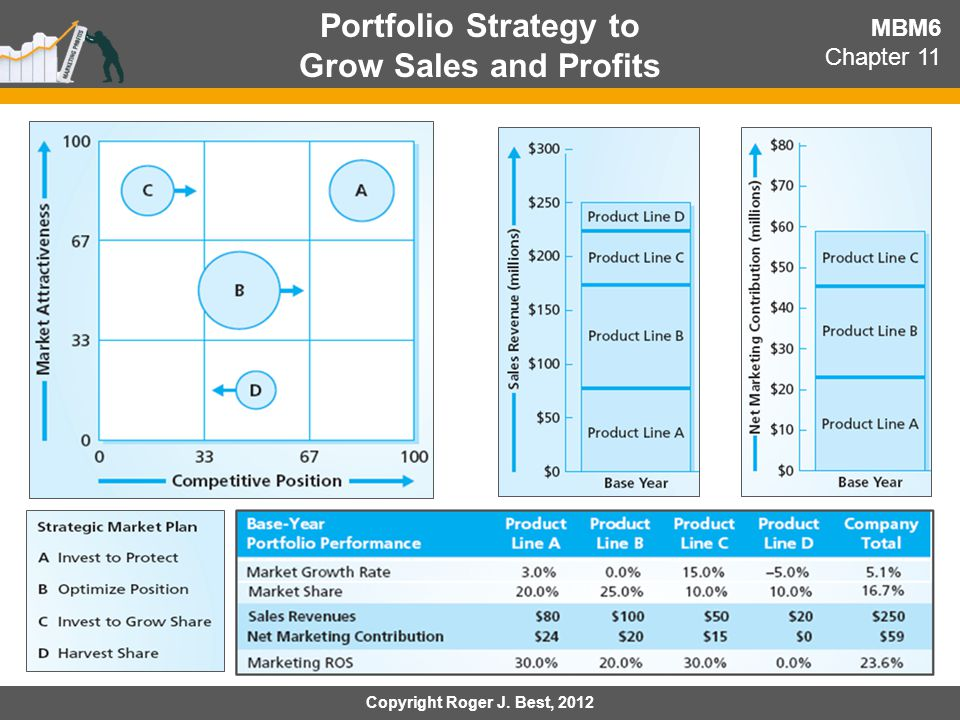 Portfolio Strategy to Grow Sales and Profits