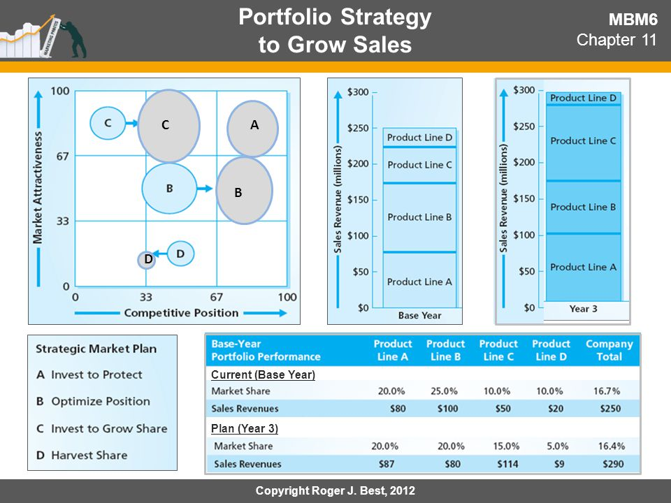 Portfolio Strategy to Grow Sales