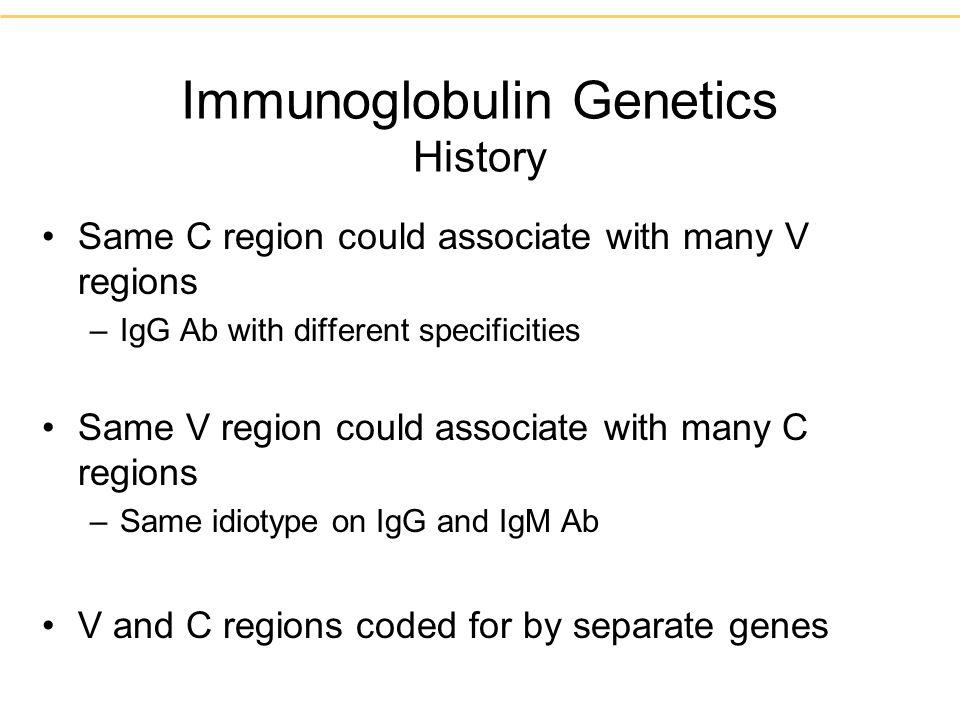 Immunoglobulin Genetics History