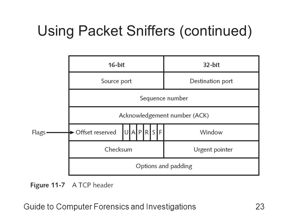 Using Packet Sniffers (continued)