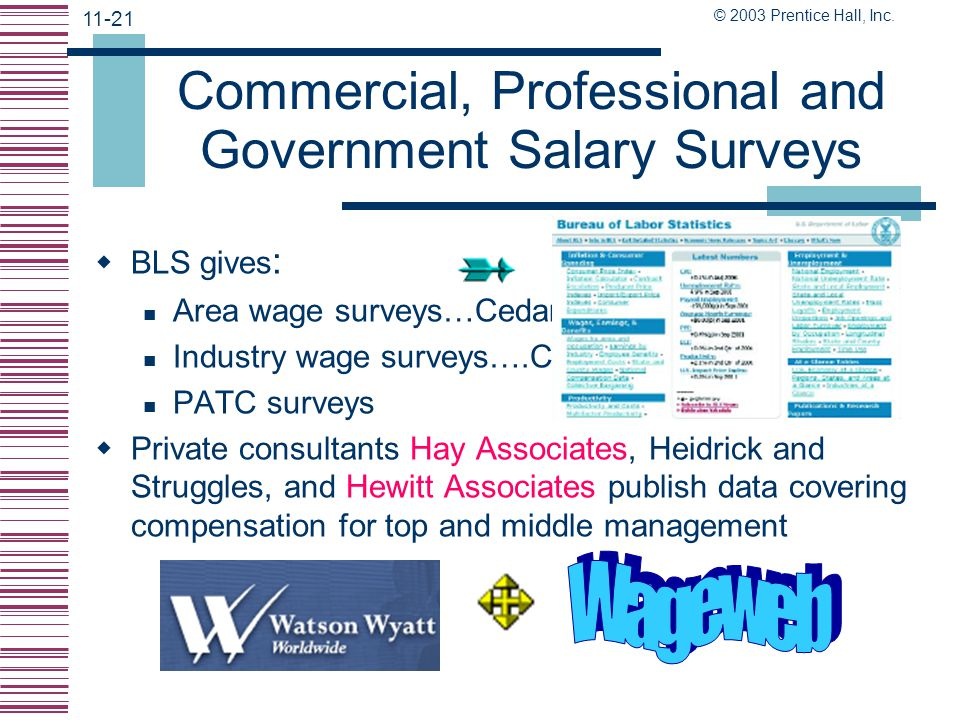 Commercial, Professional and Government Salary Surveys