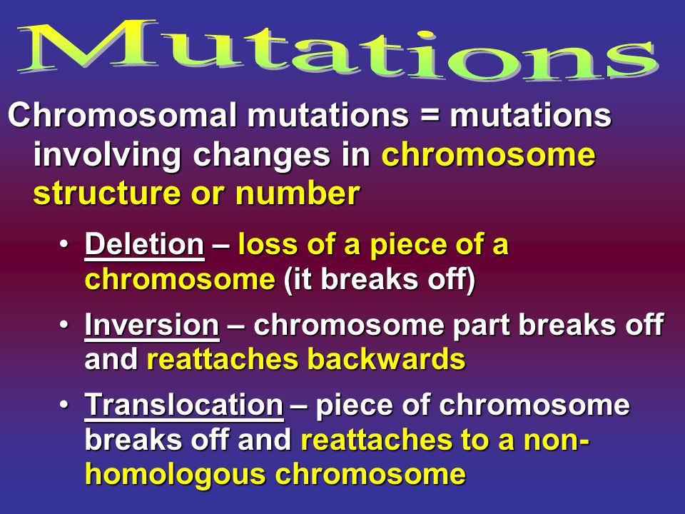 Mutations Chromosomal mutations = mutations involving changes in chromosome structure or number.
