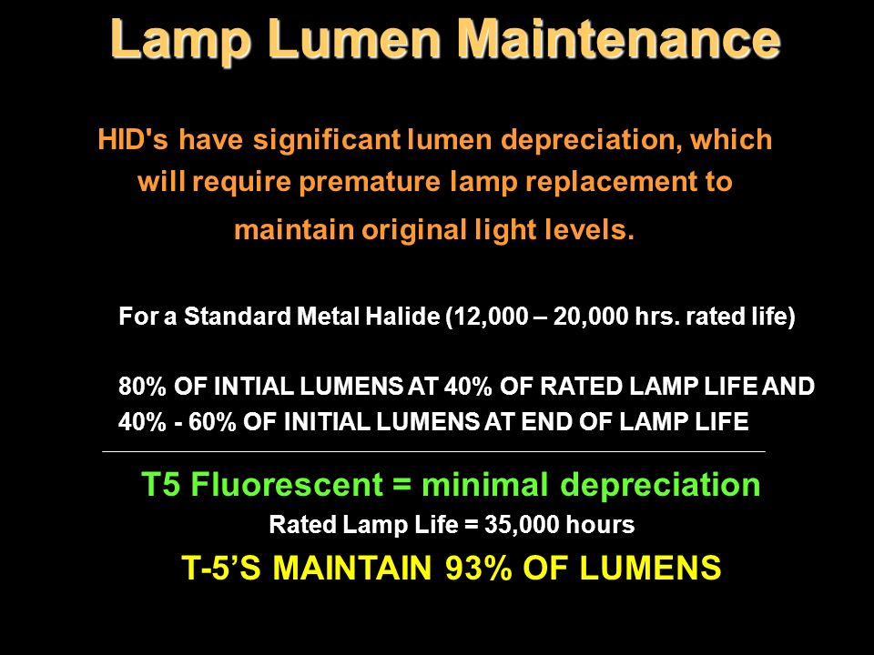 Lamp Lumen Maintenance