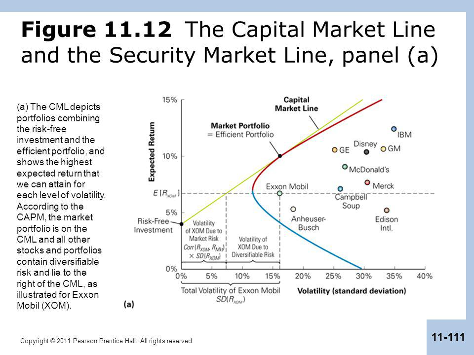 Figure 11.12 The Capital Market Line and the Security Market Line, panel (a)