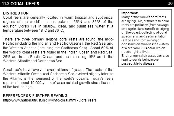 11.2 CORAL REEFS Important!