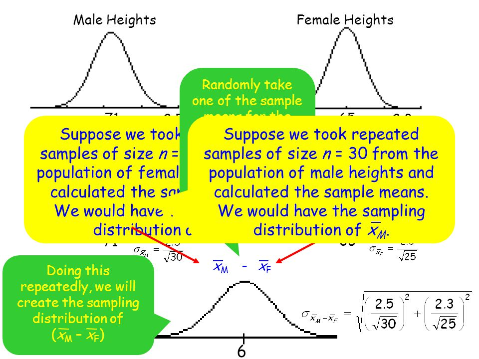 71 Male Heights. 65. Female Heights.