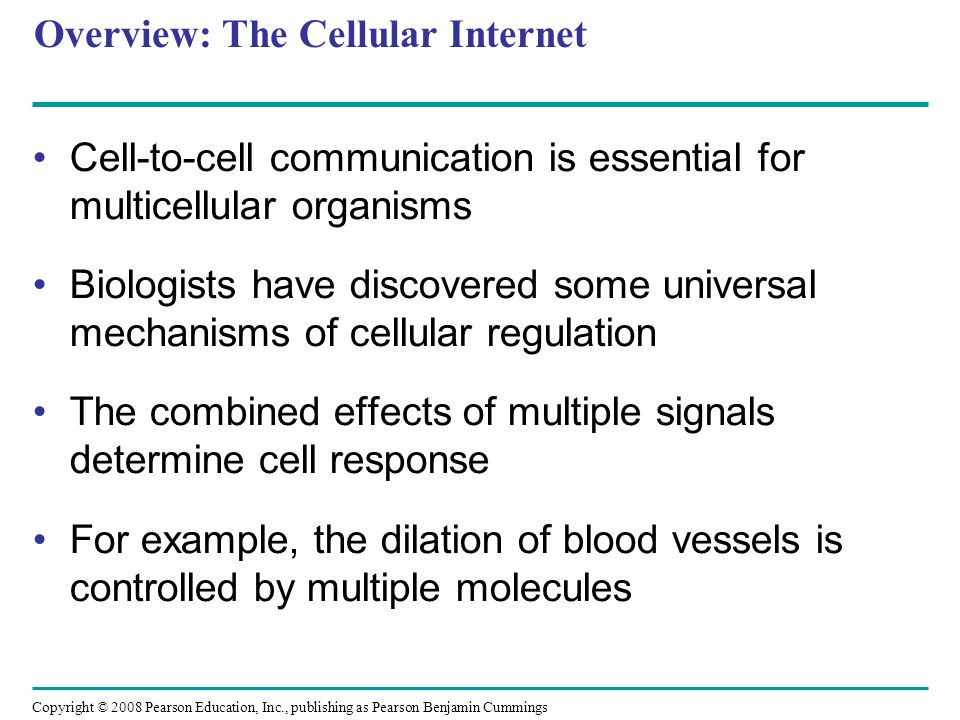Overview: The Cellular Internet