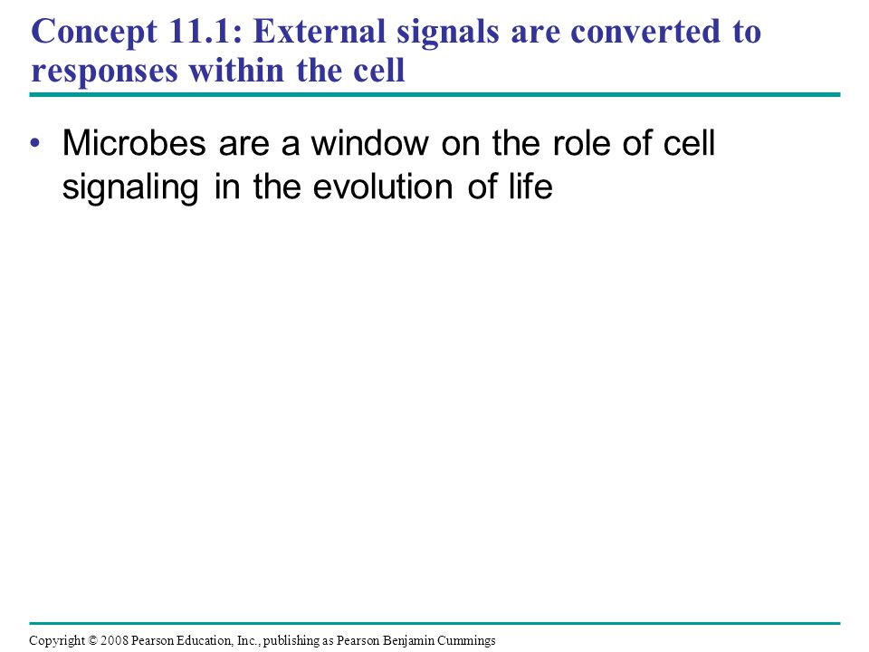 Concept 11.1: External signals are converted to responses within the cell