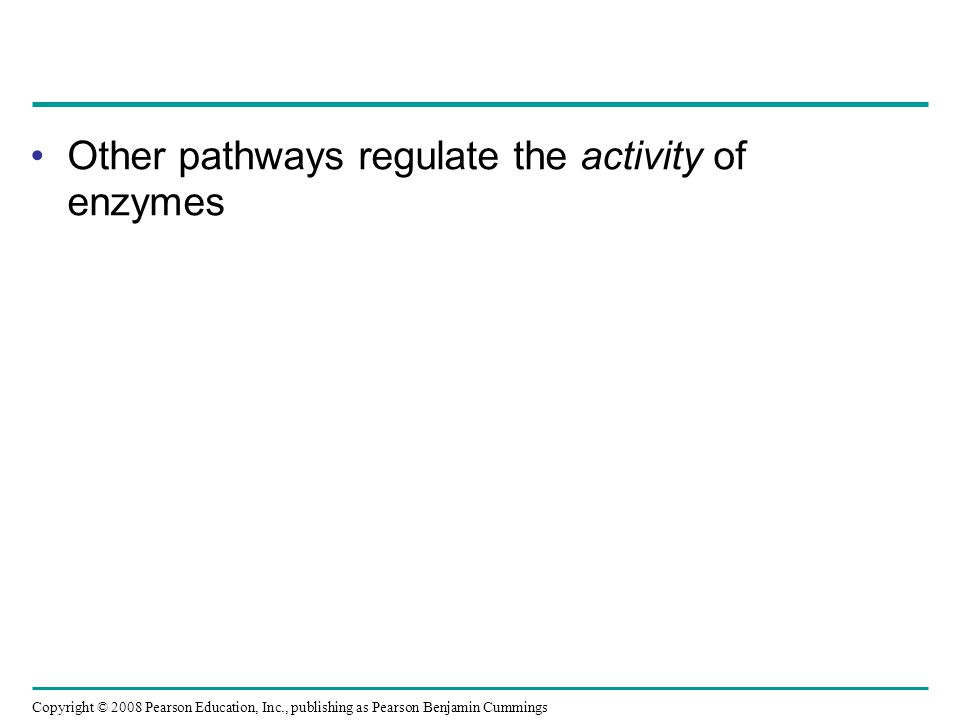 Other pathways regulate the activity of enzymes