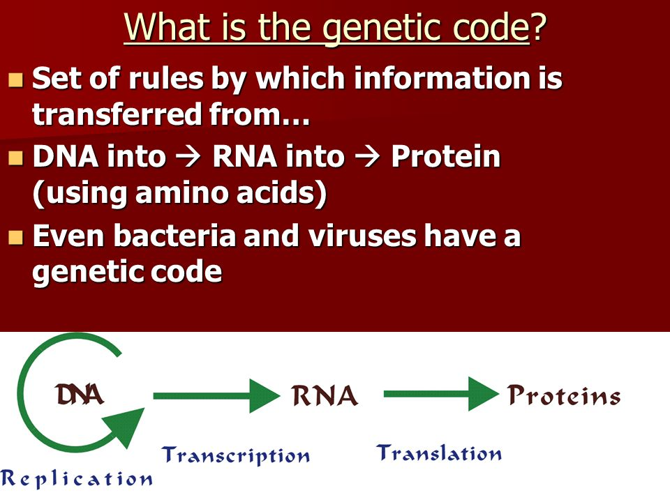 What is the genetic code