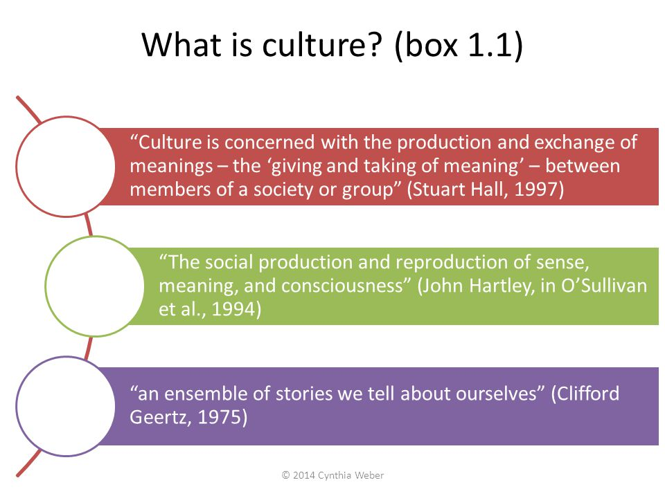 What is culture (box 1.1)