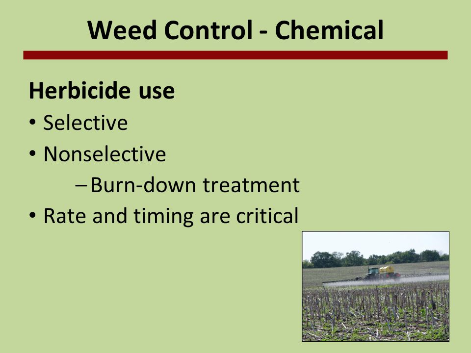 Weed Control - Chemical