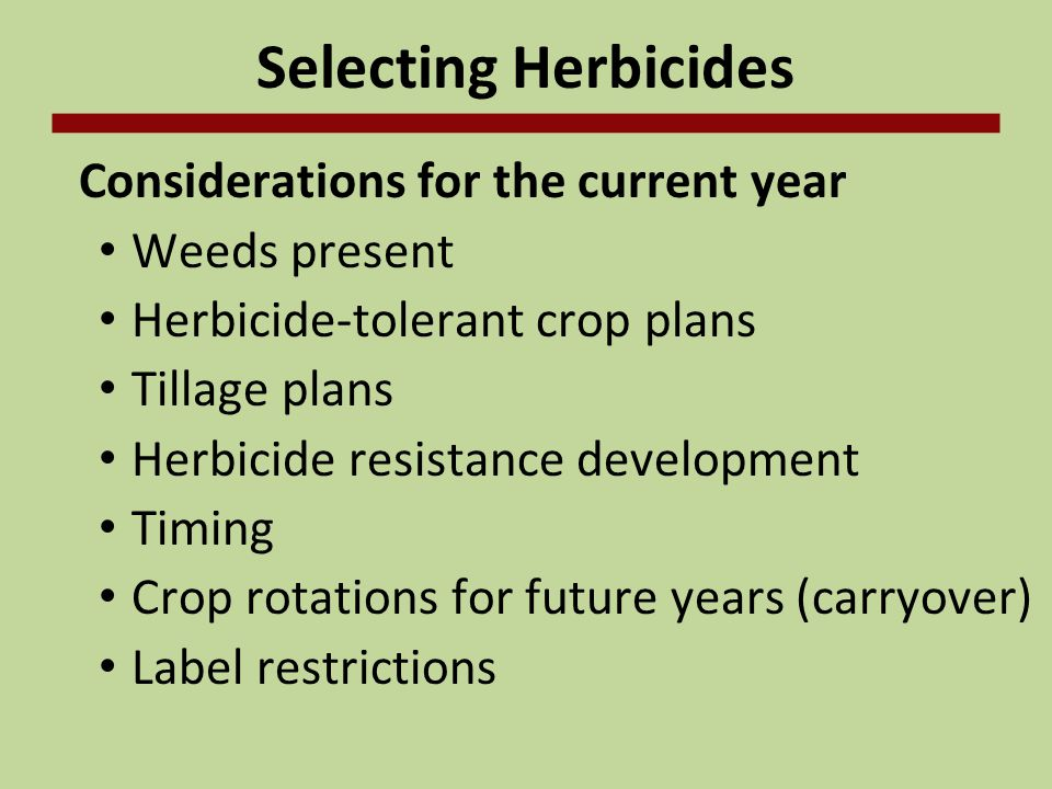 Selecting Herbicides Considerations for the current year Weeds present