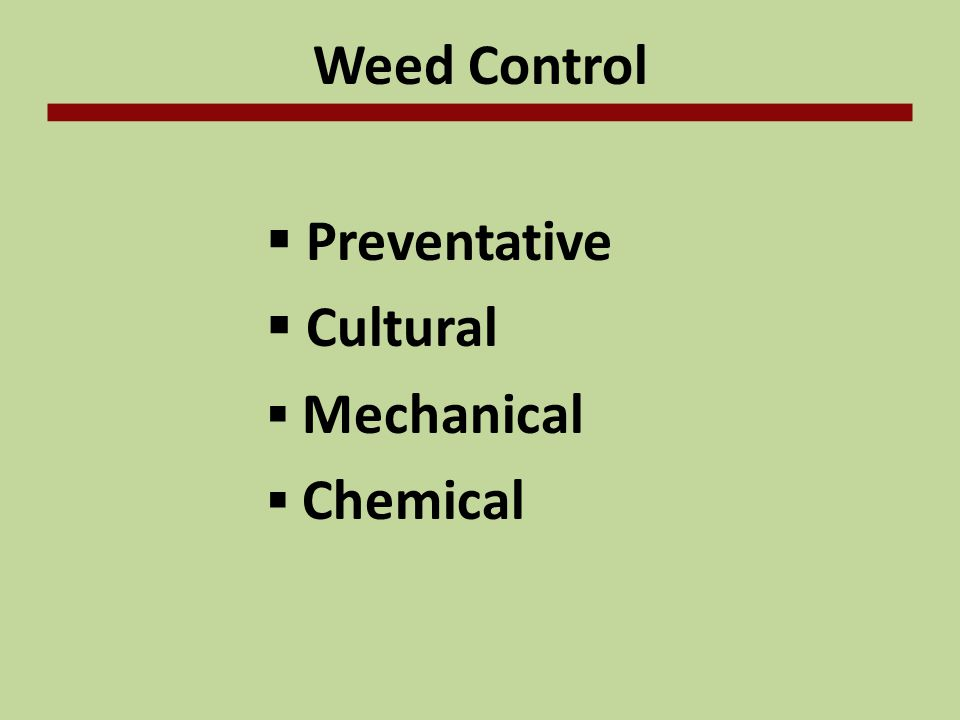 Weed Control Preventative Cultural Mechanical Chemical