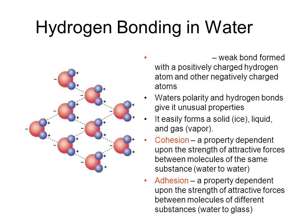 Hydrogen Bonding in Water