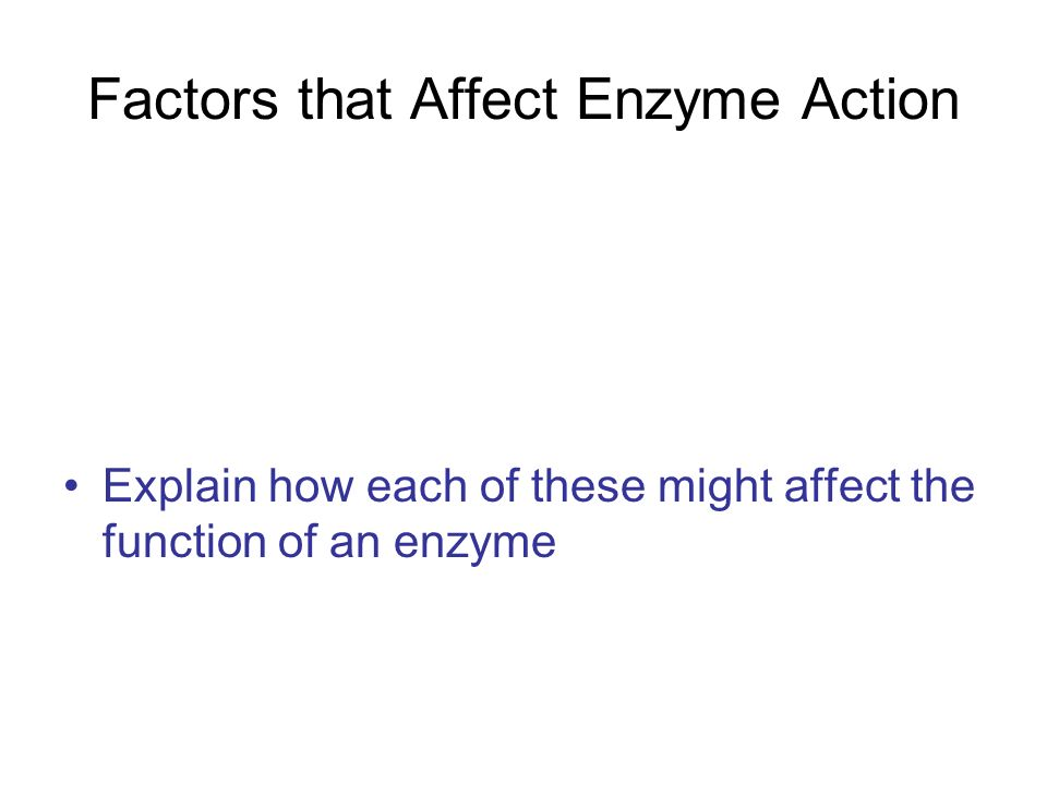 Factors that Affect Enzyme Action