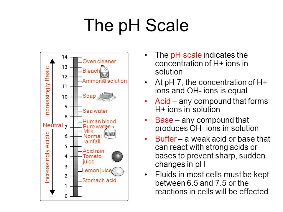 The pH Scale The pH scale indicates the concentration of H+ ions in solution. At pH 7, the concentration of H+ ions and OH- ions is equal.