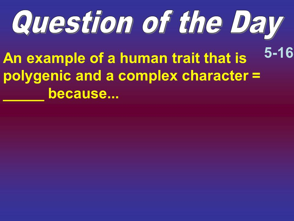 Question of the Day 5-16.