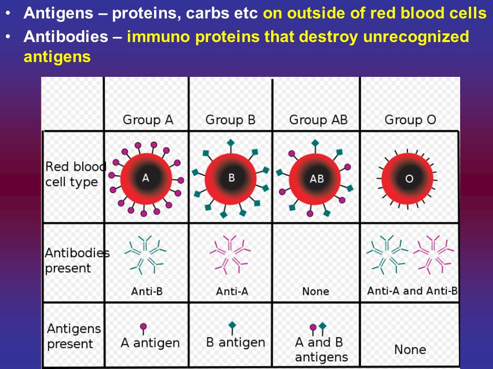 Antigens – proteins, carbs etc on outside of red blood cells