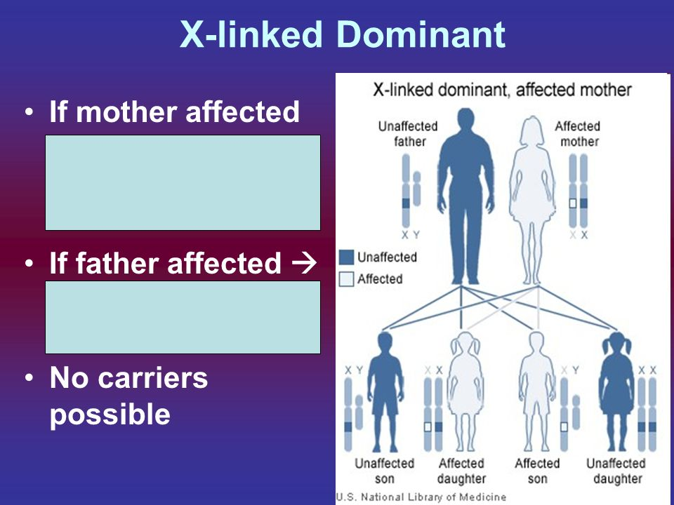 X-linked Dominant If mother affected  equal chance of sons / daughters affected. If father affected  All daughters will have, sons ok.