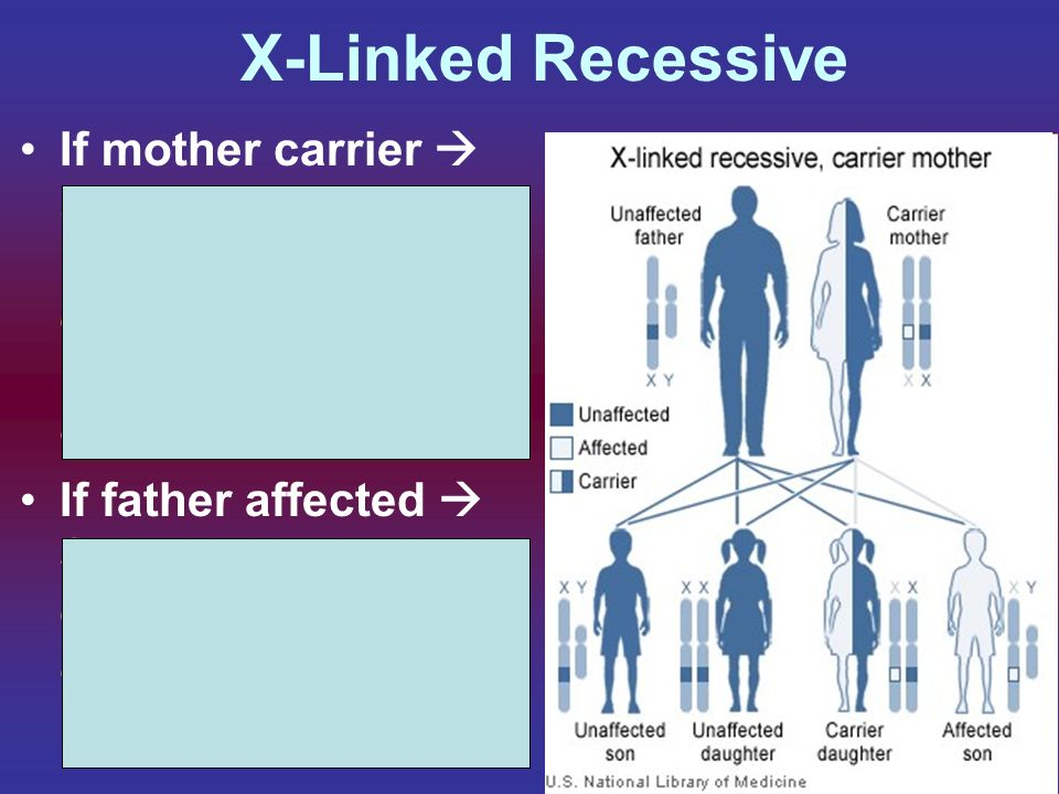 X-Linked Recessive If mother carrier  50% chance son will be affected, no daughters will have (females can be carriers)