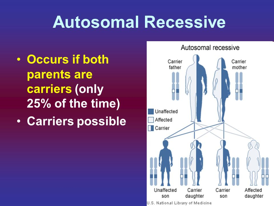 Autosomal Recessive Occurs if both parents are carriers (only 25% of the time) Carriers possible