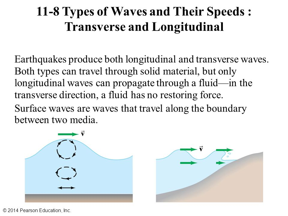 11-8 Types of Waves and Their Speeds : Transverse and Longitudinal