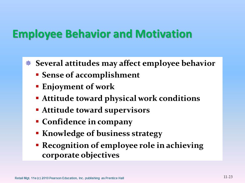 Employee Behavior and Motivation
