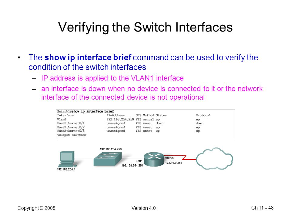 Verifying the Switch Interfaces