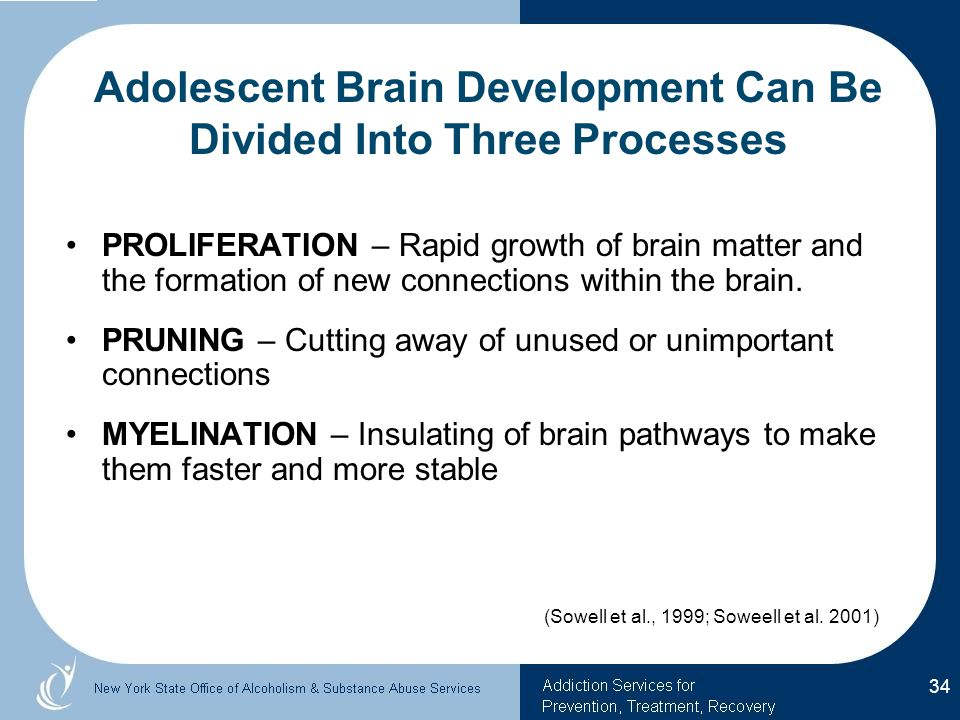 Adolescent Brain Development Can Be Divided Into Three Processes