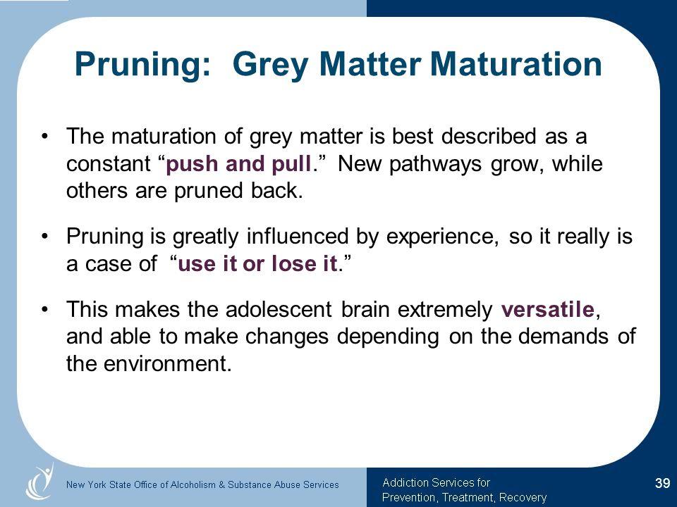 Pruning: Grey Matter Maturation