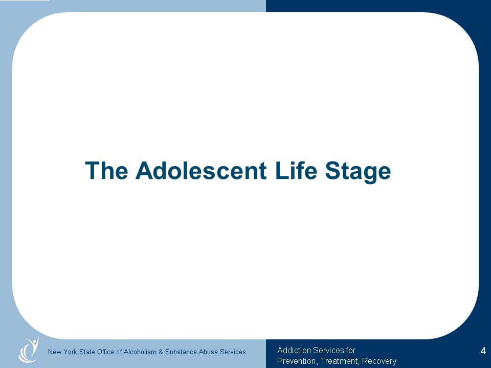 The Adolescent Life Stage