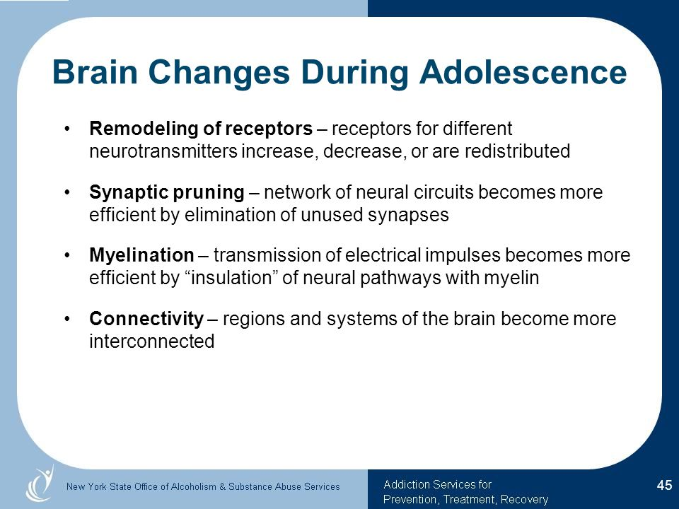 Brain Changes During Adolescence