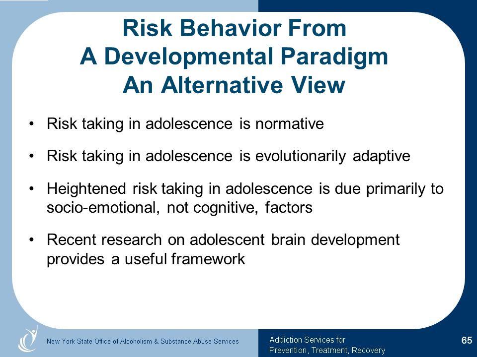Risk Behavior From A Developmental Paradigm An Alternative View