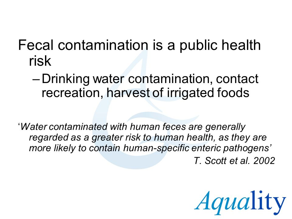 Fecal contamination is a public health risk