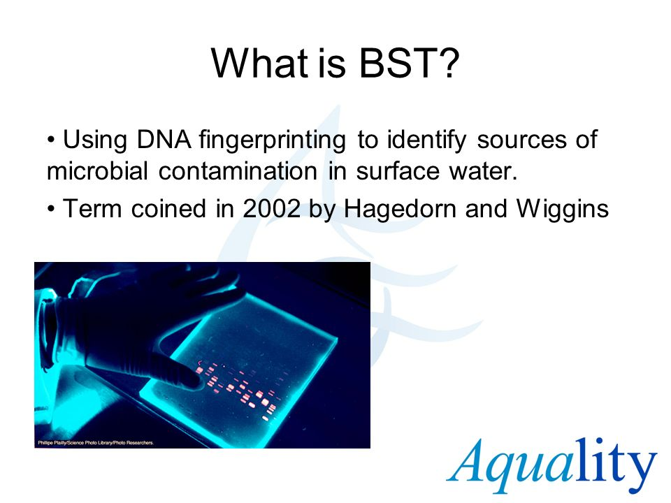 What is BST Using DNA fingerprinting to identify sources of microbial contamination in surface water.