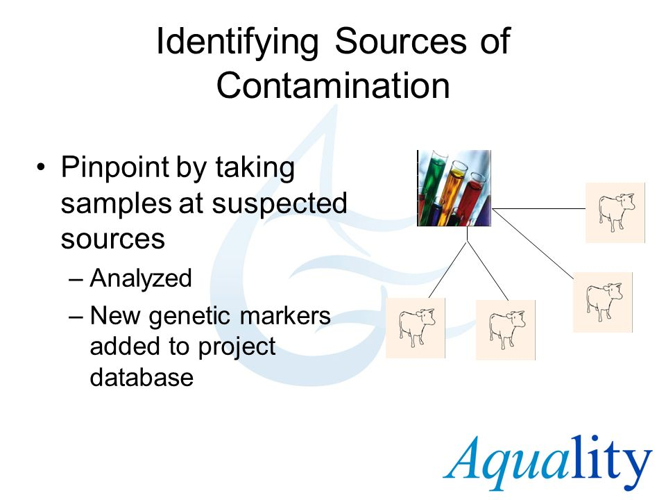 Identifying Sources of Contamination