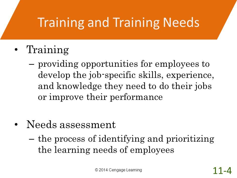 Training and Training Needs