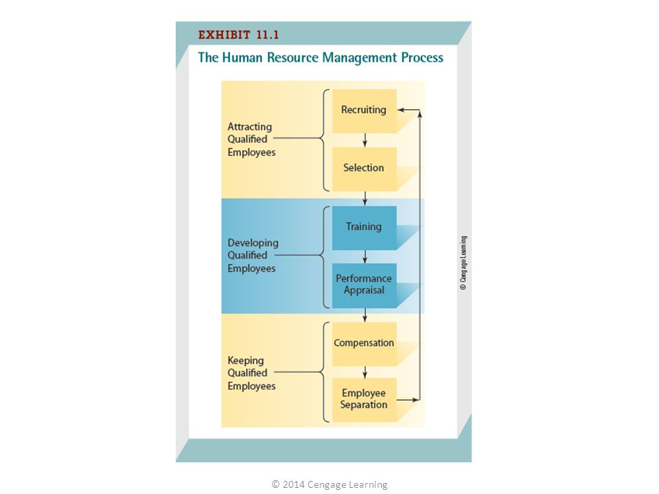 Human resource management (HRM) is the process of finding, developing, and keeping the right people to form a qualified work force and is one of the most difficult and important of all management tasks. This chapter is organized around the three parts of the human resource management process shown in Exhibit 11.1: attracting, developing, and keeping a qualified work force.