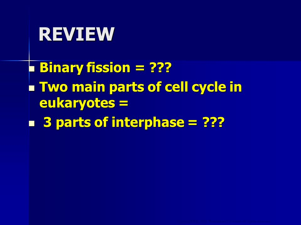 REVIEW Binary fission =