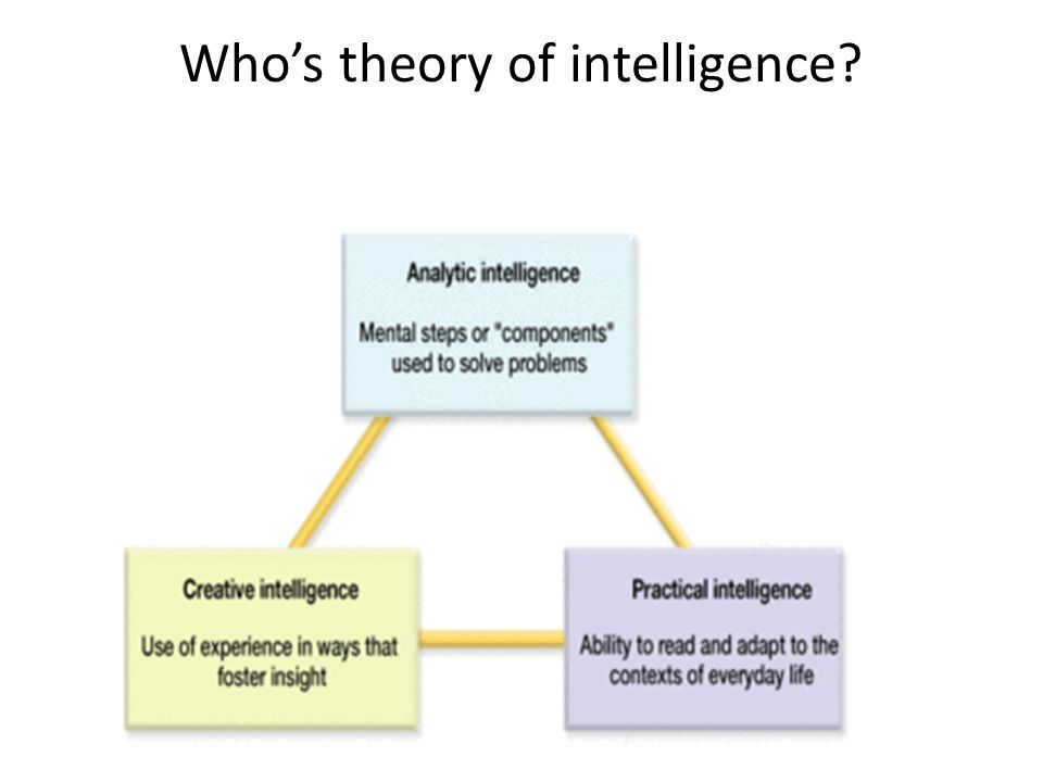 Who's theory of intelligence