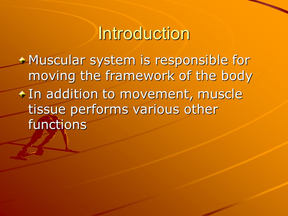 Introduction Muscular system is responsible for moving the framework of the body.