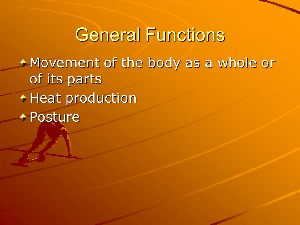 General Functions Movement of the body as a whole or of its parts