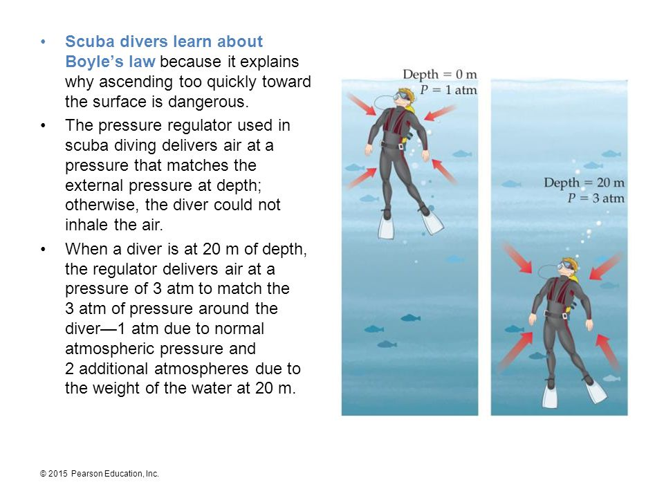 Scuba divers learn about Boyle's law because it explains why ascending too quickly toward the surface is dangerous.