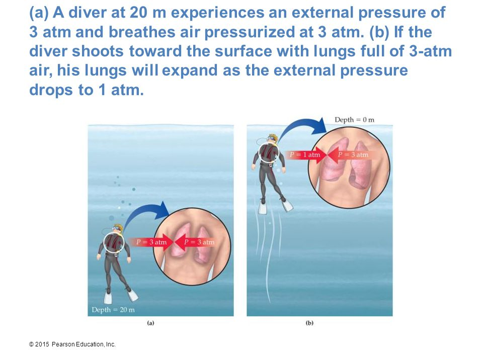 (a) A diver at 20 m experiences an external pressure of 3 atm and breathes air pressurized at 3 atm.