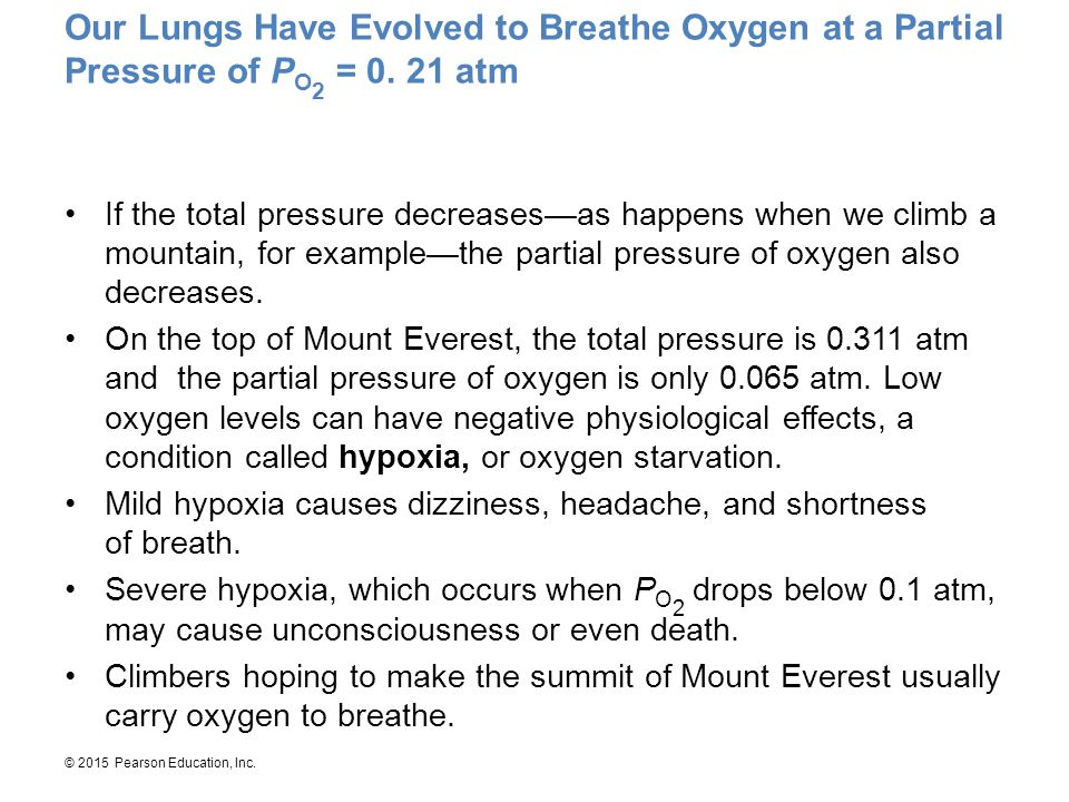 Our Lungs Have Evolved to Breathe Oxygen at a Partial Pressure of PO2 = 0. 21 atm