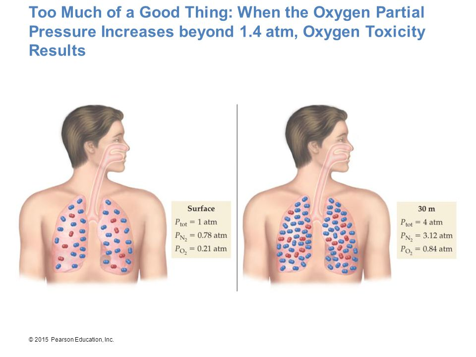 Too Much of a Good Thing: When the Oxygen Partial Pressure Increases beyond 1.4 atm, Oxygen Toxicity Results