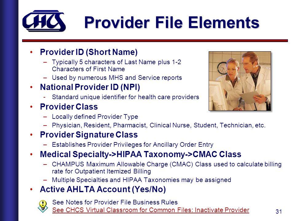 Provider File Elements