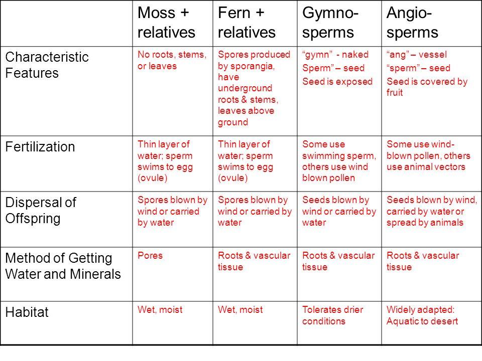 Moss + relatives Fern + relatives Gymno-sperms Angio-sperms