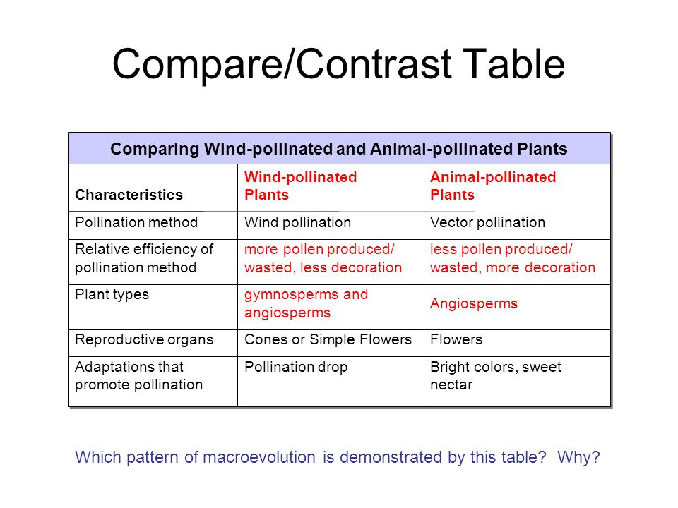 Plant diversity structure ppt video online download Types of contrast